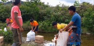 indigenas_ayudas