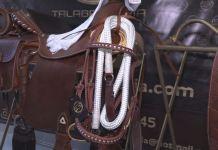 postre_caballos