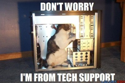 pc tech support cat