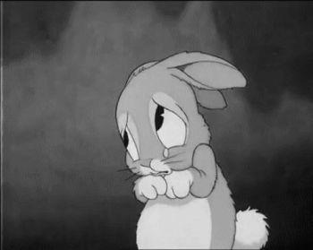 gifa sad rabbit