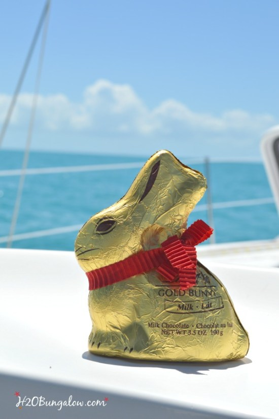 Easter bunny in the Gulf of Mexico H2OBungalow