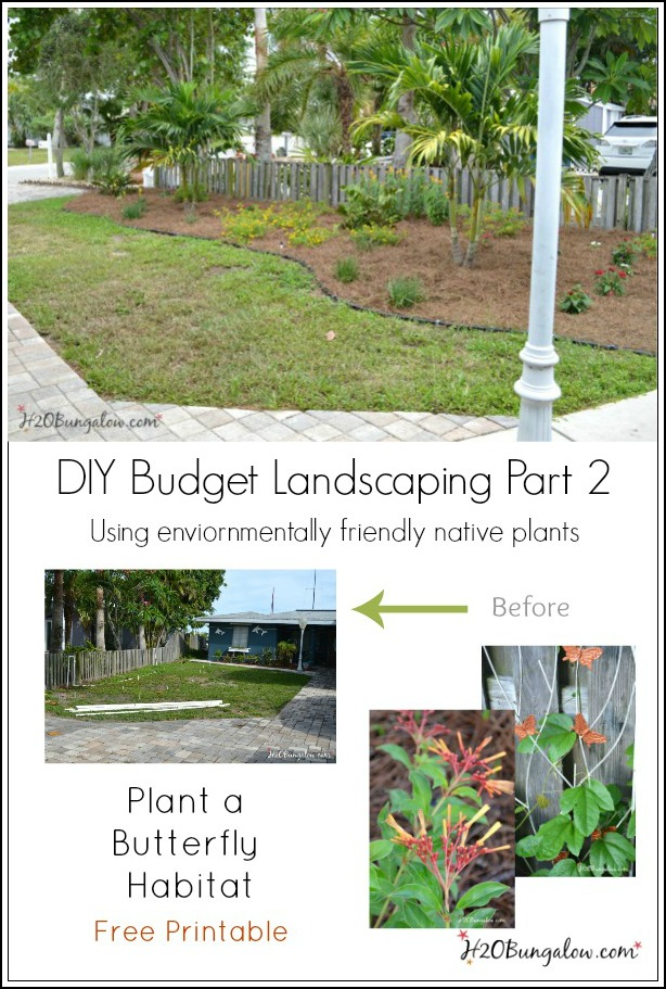 DIY budget landscaping using native and butterfly loving plants with free printable how to guide for butterfly gardening by H2OBungalow
