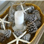 Simple DIY for a gorgeous sun washed look. Get an easy bleached pinecones look without using bleach (it doesn't work well anyway). Using just a few items from your craft supply. H2OBungalow.com