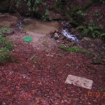 contaminated water on an estate