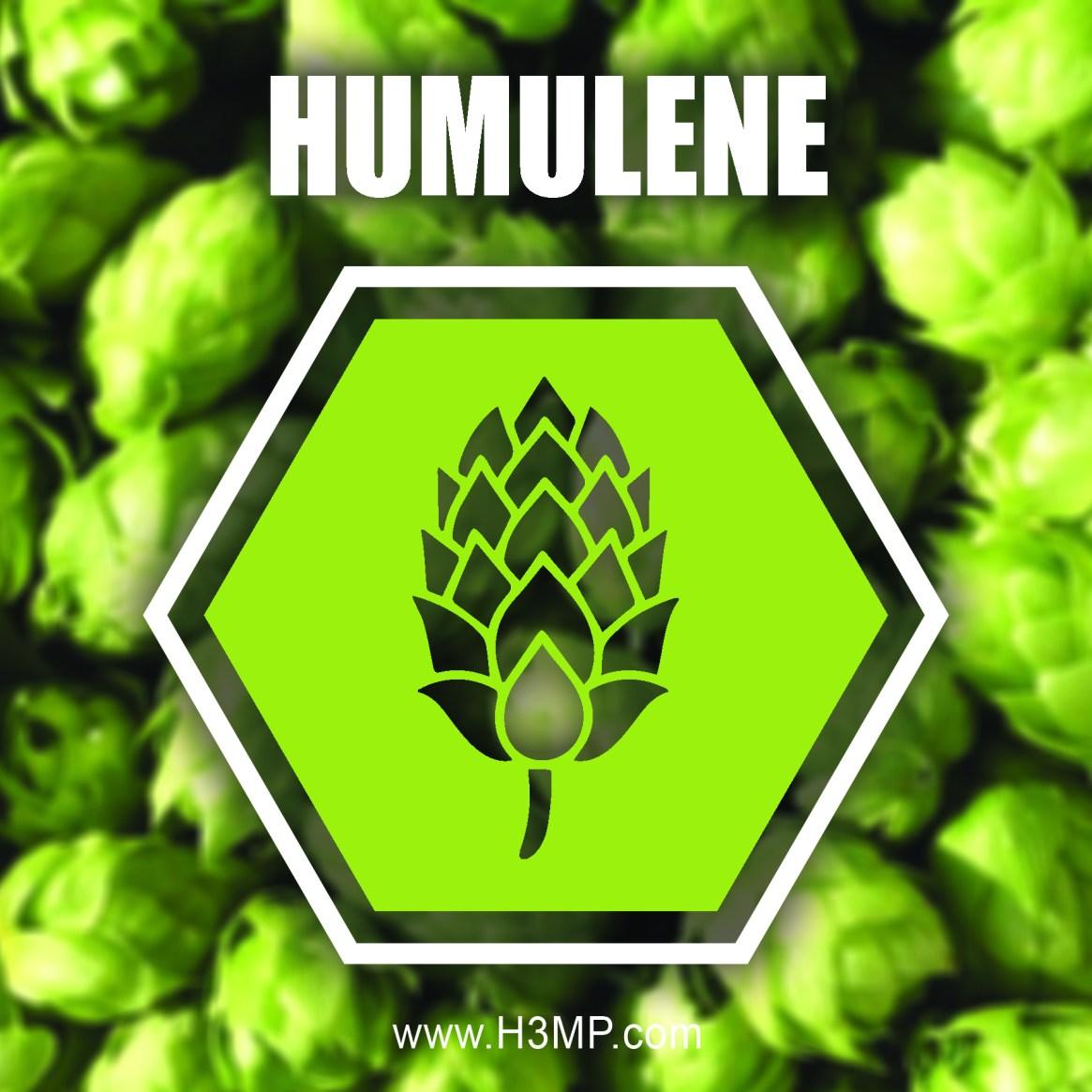 H3MP HUMULENE_1