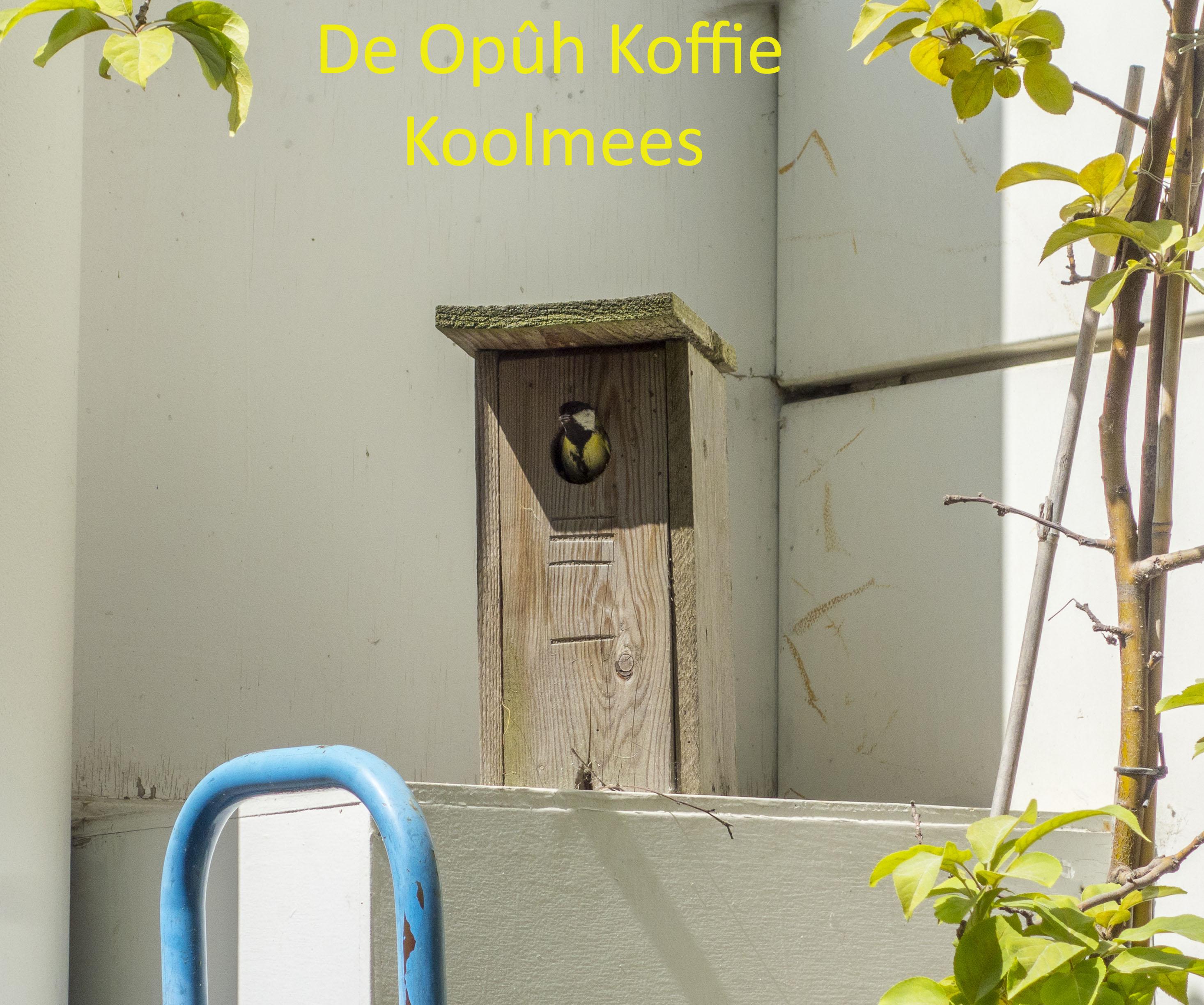 De Opûh Koffie Koolmees