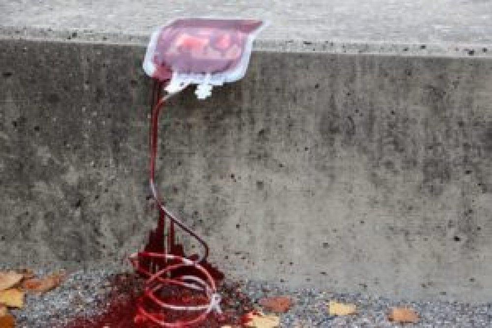 Blutspenden von Schwulen unerwünscht?
