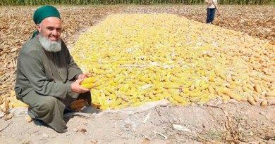Таджикистан: имам хатибов отправили на сбор осеннего урожая