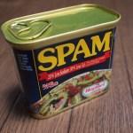 akismetでスパムコメント・スパムメール対策|その使い方とAPIキーとは