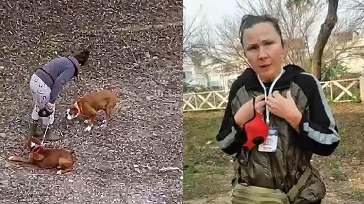 Antalya'da köpeğe şiddet uygulayan kadın: Köpek döven ben, kediyi kurtaran da ben