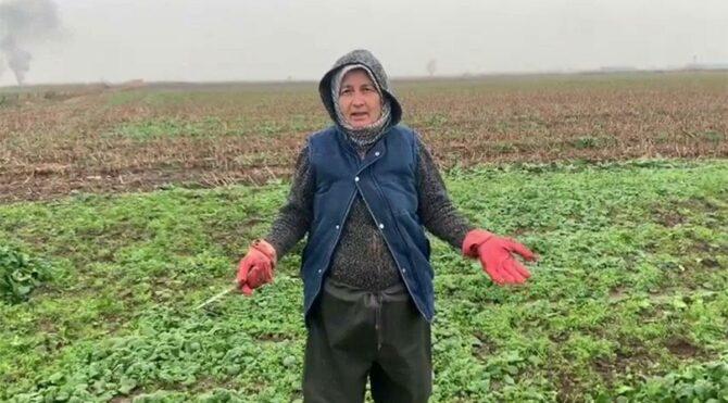 Çiftçi Meliha Atay isyan etti: Sesimizi duymuyorsun Cumhurbaşkanım, bittik gittik!
