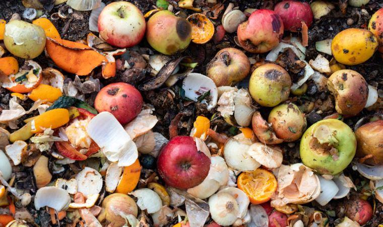 2021 BM Gıda İsrafı Raporu: Türkiye'de her yıl 7,7 milyon ton yiyecek çöpe atılıyor