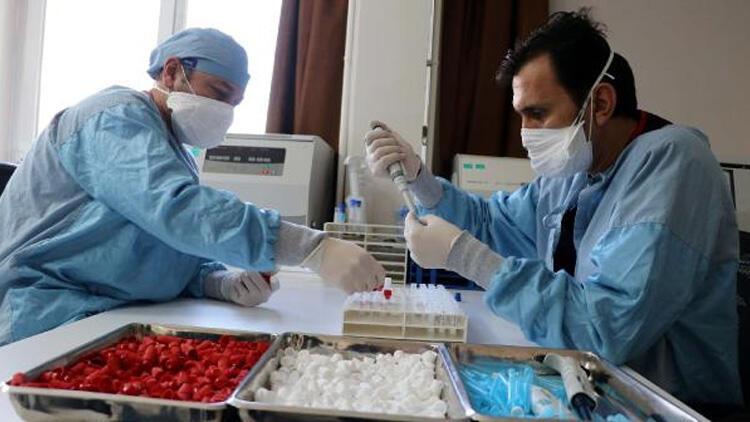 Doç. Dr. Zafer Sezer'den yerli aşı sözleri! Faz-3 için tarih verdi