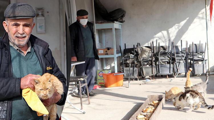 Salgında kapanan kahvehanesini sokak hayvanlarına açtı