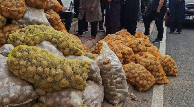 Yeşillenmeye başladığı görülen bedava patatesler için uyarı