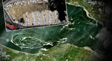 Deniz salyası tehlikesi büyüyor… Korkutan görüntü gözler önüne serildi