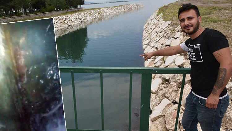Eğirdir Gölü'ndeki su samuru görüntüsü şaşırttı
