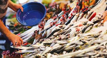 Müsilaj günlerinde balık yemek güvenli mi