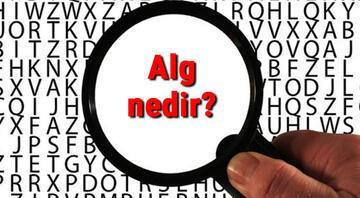 Alg nedir ve zararları nelerdir Alg özellikleri hakkında bilgi