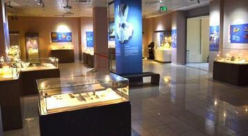 Batman Müzesinde 16 eserin kaybolduğu iddiası İnceleme başlatıldı