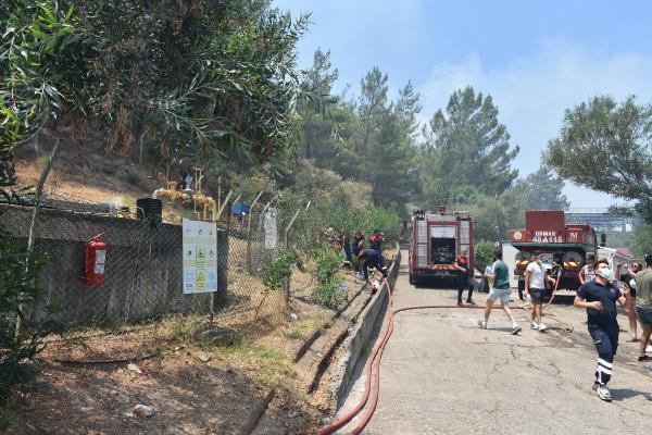 Marmaris'teki yangında alevler otelin LPG tankına 50 metre kala söndürülmüş