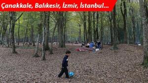 Ormanlara zorunlu veda... Çanakkale, İzmir, İstanbul... Liste genişliyor