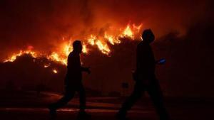 Son dakika... Bodrum Mumcular'daki yangınla ilgili flaş gelişme: 3 kişi tutuklandı