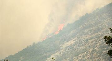 Antalyanın Gündoğmuş ve Alanyadaki orman yangınları kontrol altına alınmaya çalışılıyor Mahalleler boşaltıldı
