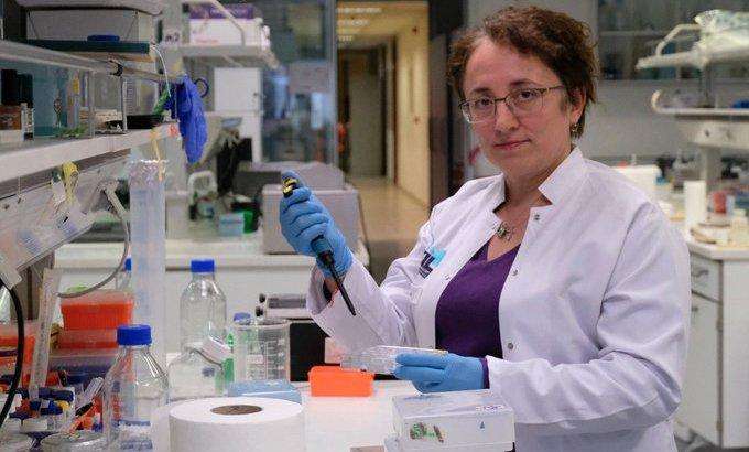 Prof. Dr. Nesrin Özören Covid-19 aşısı için tarih verdi