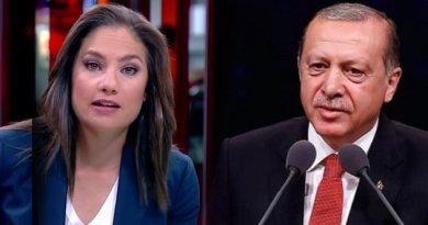mengü erdoğan