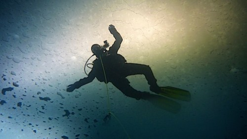This is why we dive!.jpg