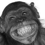 10 Increíbles Beneficios Psicológicos y Sociales de Sonreír