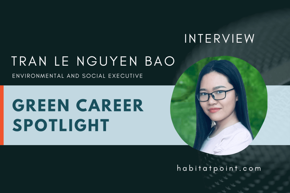 tran le green career interview