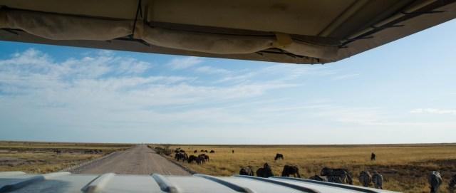 viajar carro namibia
