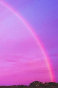 ピンクの虹