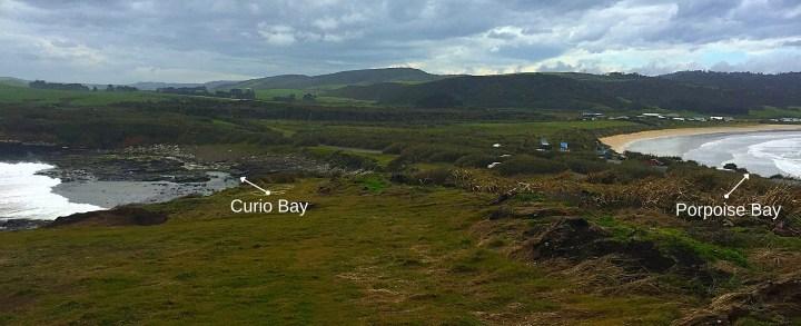Curio Bay
