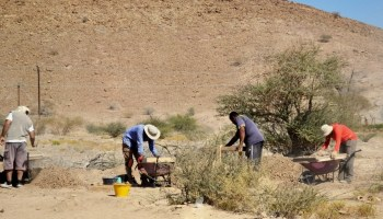 Creativity and Archaeology - Habits of a Travelling
