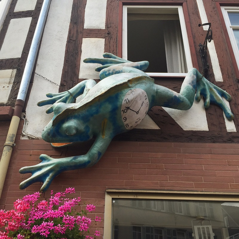 The City of Frogs