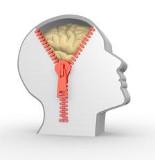 Comprendre le cerveau