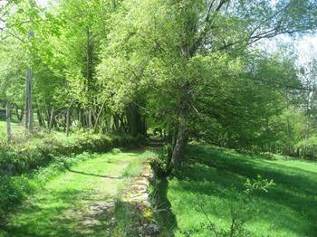 Sentier sur les flancs de Belledonne