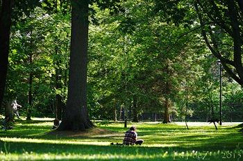 Parc Rosaire Gauthier