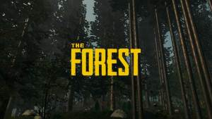 The Forest: Códigos y Trucos para PC