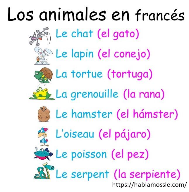 Los animales en francés, actividades para niños