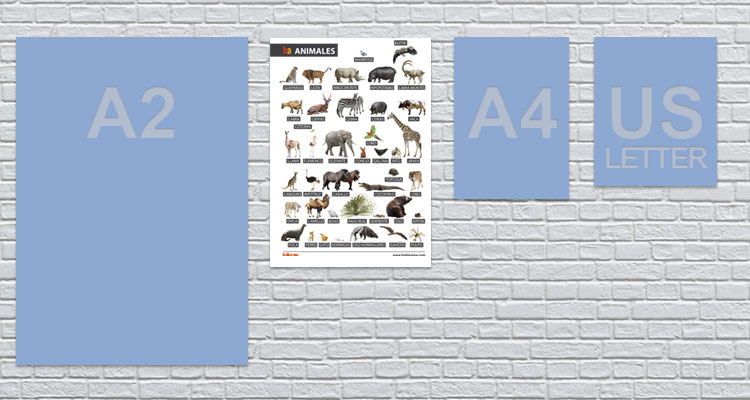 a3 animals poster