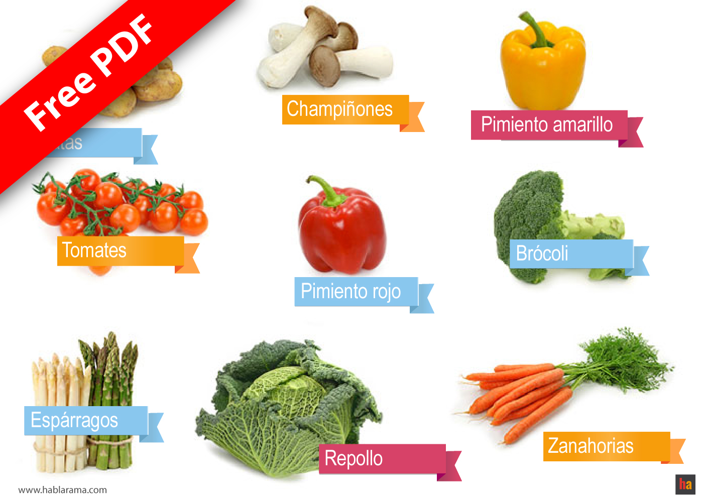 Free Spanish Vocabulary 08 Vegetables