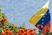bandera venezuela paisaje