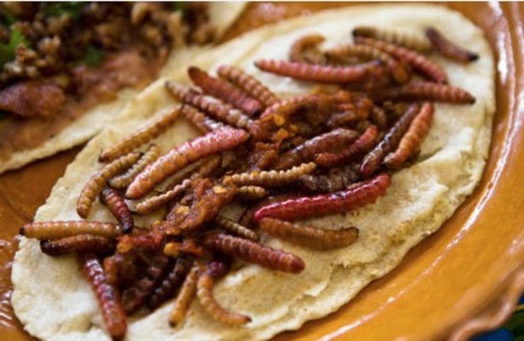comida mexicana historia origen tipos recetas y mucho ms