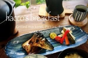 日本の食卓 鯖の塩焼き 発酵 土方夕暉 札幌