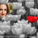 Hacer fotomontajes con tulipanes