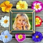 Fotomontaje con cuadro rodeado de flores